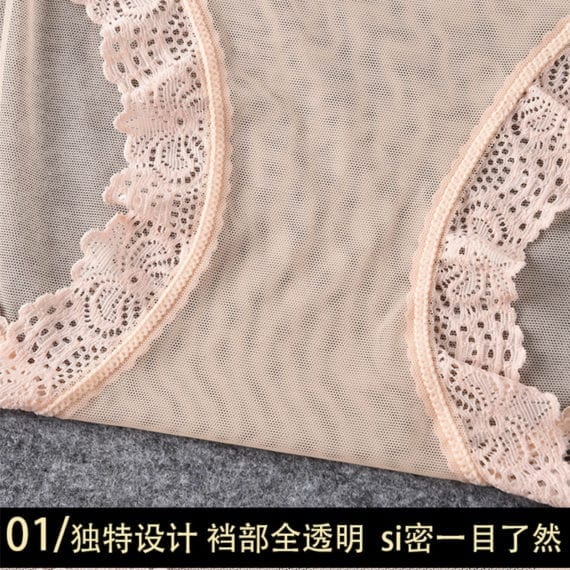 ropa interior femenina Underwear Women Panties Plus Size 4XL Soft Lace Mesh fully transparent and thin Sexy Panties Lingerie 4